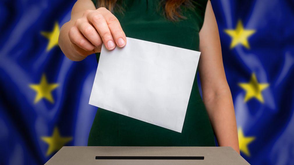 Rösta till EU-valet i Gallerian 24-25/5